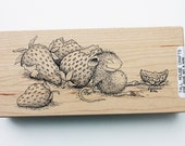Sleeping with Strawberries rubber stamp Stampa Rosa #11 wood mounted House Mouse Designs