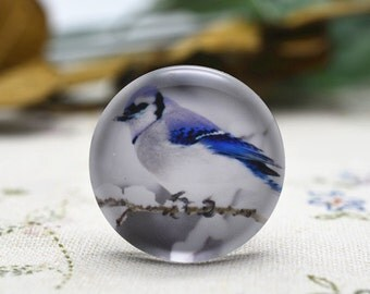 4pcs 25mm Round Handmade Photo Glass Cabochon - Bird