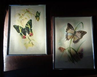 Vintage Pair of Butterfly Prints, B. Ballestar Lithographic Prints of two watercolor paintings  in matching Marsel Mirror Frames Brooklyn NY