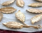 Leaves,Vintage Style,Supplies,Scrap booking,Collage,Craft Supplies,Jewelry Supplies,Made in USA,Wedding Supplies,Brass Leaves, STA-242