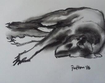 Original charcoal life drawing of my dog, Dexter