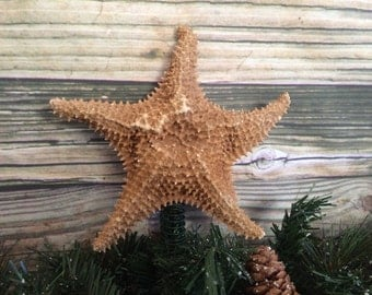Starfish Christmas Tree Topper, Starfish Tree Topper, Caribbean Starfish Topper, Caribbean Christmas,Tropical Christmas,Sea Star Tree Topper