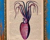 Violet Vintage French Giant Squid Illustrated Unframed Print on an Antique Upcycled Bookpage