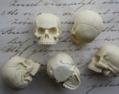 5 Human Skull Cabs Resin Cabochon Gothic Goth Skull Ivory 5 PIECES Human Skull Miniature 25x30mm - 5 PIECES