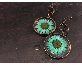 Preserved (Dyed Blue) Daisy Earrings