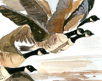 ACEO Limited Edition 1/25- Geese migration, Canadian goose art print of an original watercolor painting, Housewarming gift idea, Bird art