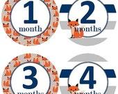 Baby Monthly Milestone Growth Stickers Fox Navy Grey Stripes Navy Nursery Theme MS547 Baby Shower Gift Baby Photo Prop