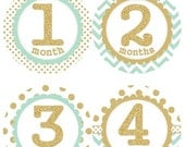 ON SALE Baby Monthly Milestone Growth Stickers Gold Glitter Mint Dots Chevrons MS006 Nursery Theme Baby Shower Gift Baby Photo Prop