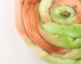 Merino Roving / Top, Green Olive Brown 3.5oz/100gm