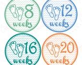 Pregnancy belly stickers - Baby Feet PLUS FREE Labor Day Sticker
