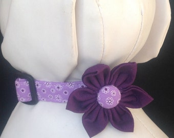 Dog collar flower set - Purple Flower Print - size XS, S, M, L, XL