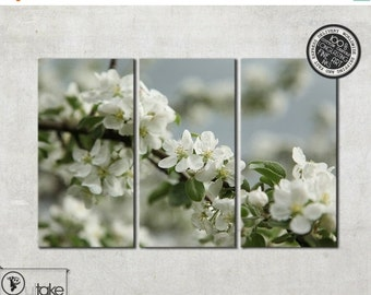 Summer sale 15% OFF Apple Blossoms canvas art, Ready to hang, Flower Photography