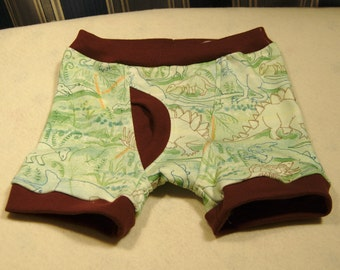 Dinosaur boxer briefs for boys, organic cotton underwear and training pants, Green dinosaur print with orange, brown, or brown trim