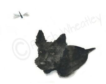 Scottie Dog 'Dragonfly'  Art Print 8X6 inch #157