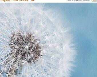 "SALE - Flower Photography, Pale Blue and White Dandelion Print, Pastel Blue, Aqua, Flower Wall Decor, Shabby Chic, Nursery Wall Art  ""Daydre"
