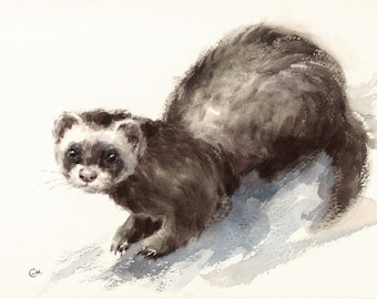 Ferret - Original Watercolor Painting 9x12 inches Wild Animals Pets