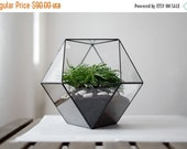 "geometric glass terrarium ""cub octahedron"" - handmade glass terrarium - planter for indoor gardening"