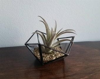 Geometric ring dish / mini planter