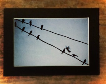 Birds in Blue-Matted 4x6 Print, Dreamy Photography, Bird Photography,Sky Photography, Nursery Art, Baby Boy Art, Fine Art Photography