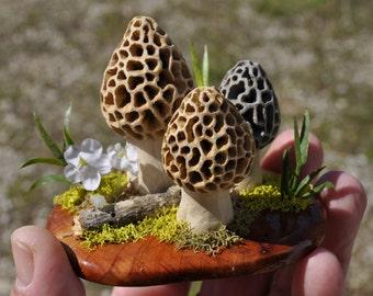 Original Hand Carved Morel Mushroom Diorama By The English Carver