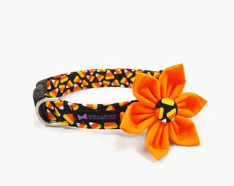 Halloween Dog Collar Flower Set Treat