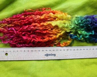 Teeswaterlocken, hand-dyed, purple, Rainbow