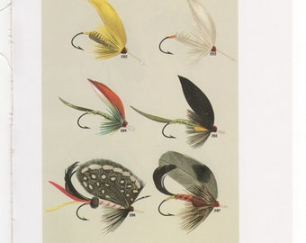 Fly Fishing Flies Print Bass and Trout Flies Print Bookplate  By Mary Orvis Marbury  Fishing Wall Art Home Decor Cabin   Plates   EE and FF