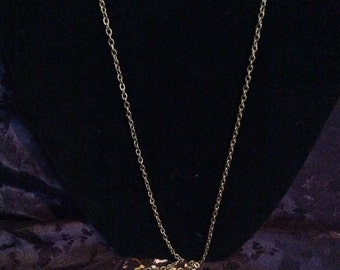 Fort perfume locket necklace 24 in