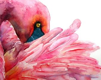 Pink: Flamingo Print