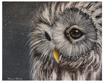 Snowy Owl 8x10 print