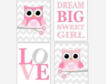 Baby Girl Nursery Art Pink Gray Owl Dream Big Little One Nursery Wall Decor Girl Room Decor Baby Nursery Decor Owls Love Print Wall Art