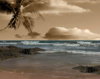 Coastal Ocean brown blue Wall Art Photography/Brown Blue Coastal Theme/Matted Picture