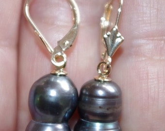 A++ 14K Gorgeous Large 16MM Cultured Black Pearl Lever Back Earrings CC