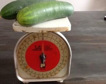 Vintage kitchen scale!