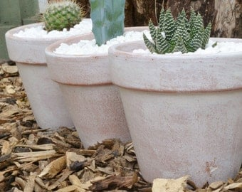 Set of Three Antiqued Weathered White Terracotta Pot