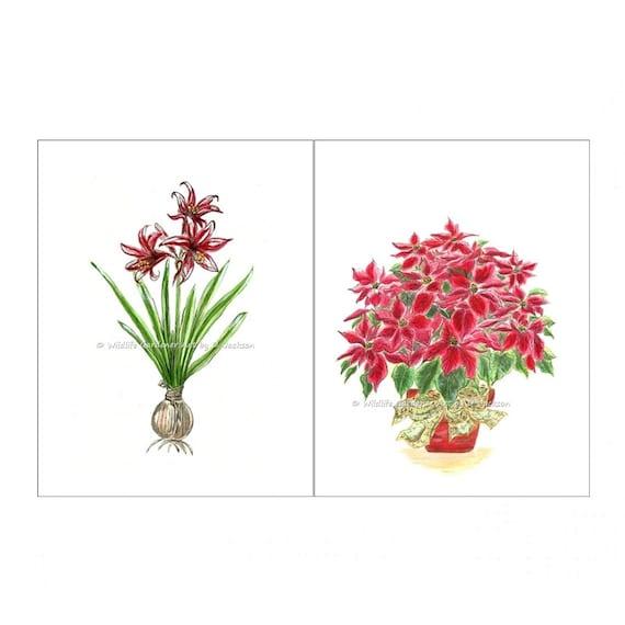Winter Floral Plants Watercolor Art Prints by ...