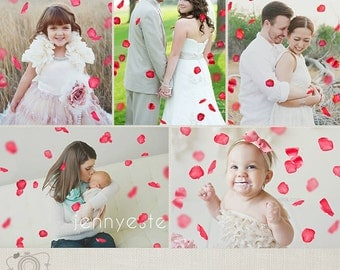 Rose Petals Photo Overlays for Photographers - C253, INSTANT DOWNLOAD