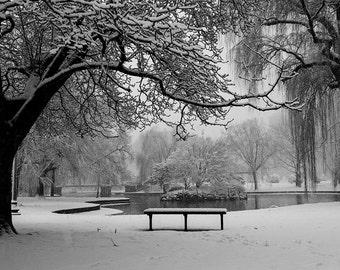 Snowstorm in the Boston Public Garden, Boston Photography, Boston Winter, Boston Art, Boston Print, Boston Picture, Winter photography