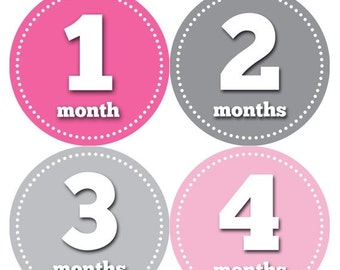 Monthly Baby Stickers Baby Month Stickers Baby Girl Month Stickers Monthly Photo Stickers Monthly Milestone Stickers 063