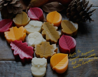 Woodland Owl & Leaf Wax Melts-Set of 8 with four Fragrance types -  wax melts, candle tarts, tart melts, flame less candle, Gift for Her