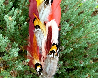 """TREE of LIFE & Pentacle Smudge Feather~ LG 15"""" ++ ~ 50% Sale + Reduced s/h"""