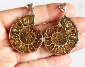 Ammonite Pendants - 30mm x 58mm - 2 Matching Half Pendants