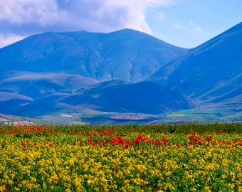 Italy View of Castelluccio di Norcia Valley Wall Decal, Nature Landscape Wall Decal, Italian Countryside Decal, Norcia Valley Wall Artwork
