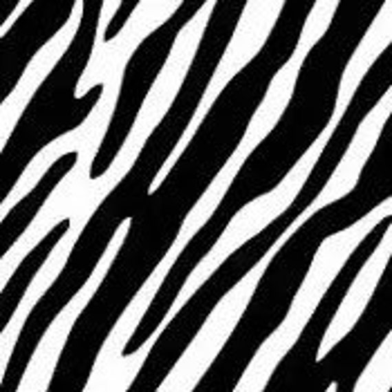 Aninimal Book: Black and White zebra Pattern Design apparel by ...