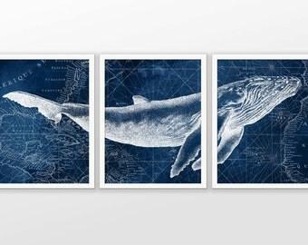 Whale Wall Art whale wall art | etsy