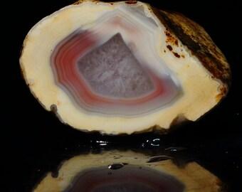 Queensland Agate Geode Half