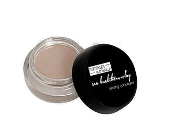 Concealer Makeup Acne Healing Clay Sea Buckthorn Berry