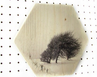 Winter landscape | Hexagon | Wood print | Scaffolding