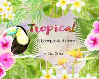 Tropical clipart /  Tropical plants bouquets / Monoi ,toucan ,hibiscus ,cocos,  /  High Quality 300ppi / Big size / PNG.