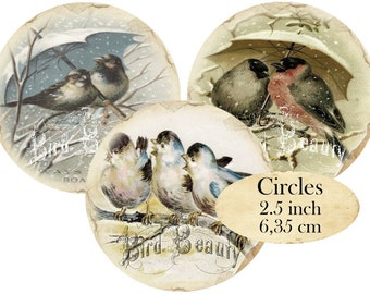 Circles 2.5 inch Vintage Birds Instant Download digital collage sheet C119 Circle Bird